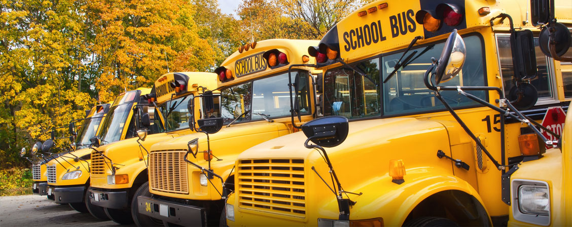 Picture of school buses in Fall.